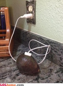 charging-avocado